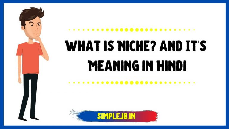 What is Niche? and It's Meaning in Hindi